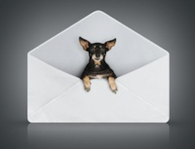 Briefpapier Varianten